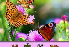 rompecabezas de la mariposa 220x150 - Rompecabezas de la mariposa